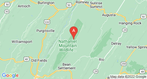 map of Nathaniel Mountain (United States of America)